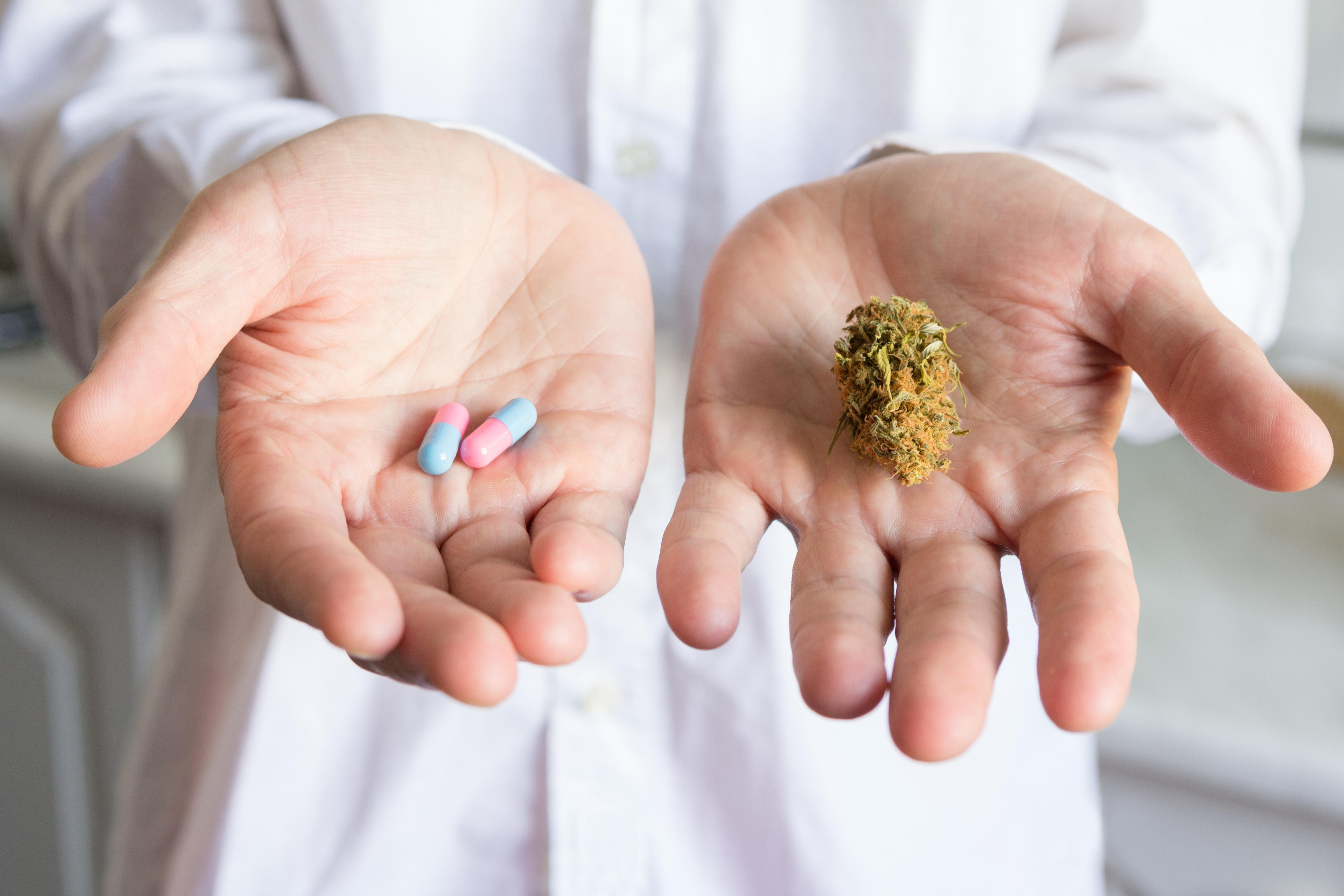 Le cannabis médical réduit bien la tension artérielle chez les personnes âgées (Visuel Adobe Stock 112934934)
