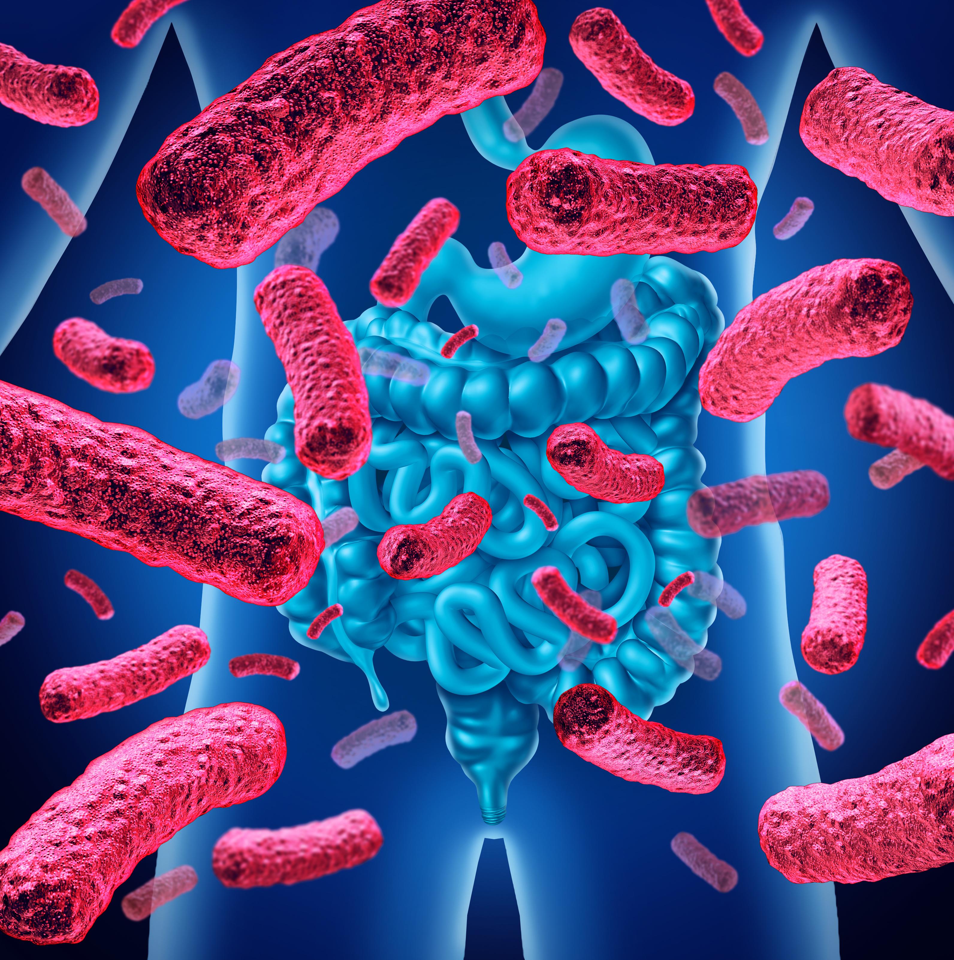 Cibler le microbiote intestinal pourrait constituer un moyen efficace de s'attaquer à la modification de l'axe intestin-cerveau