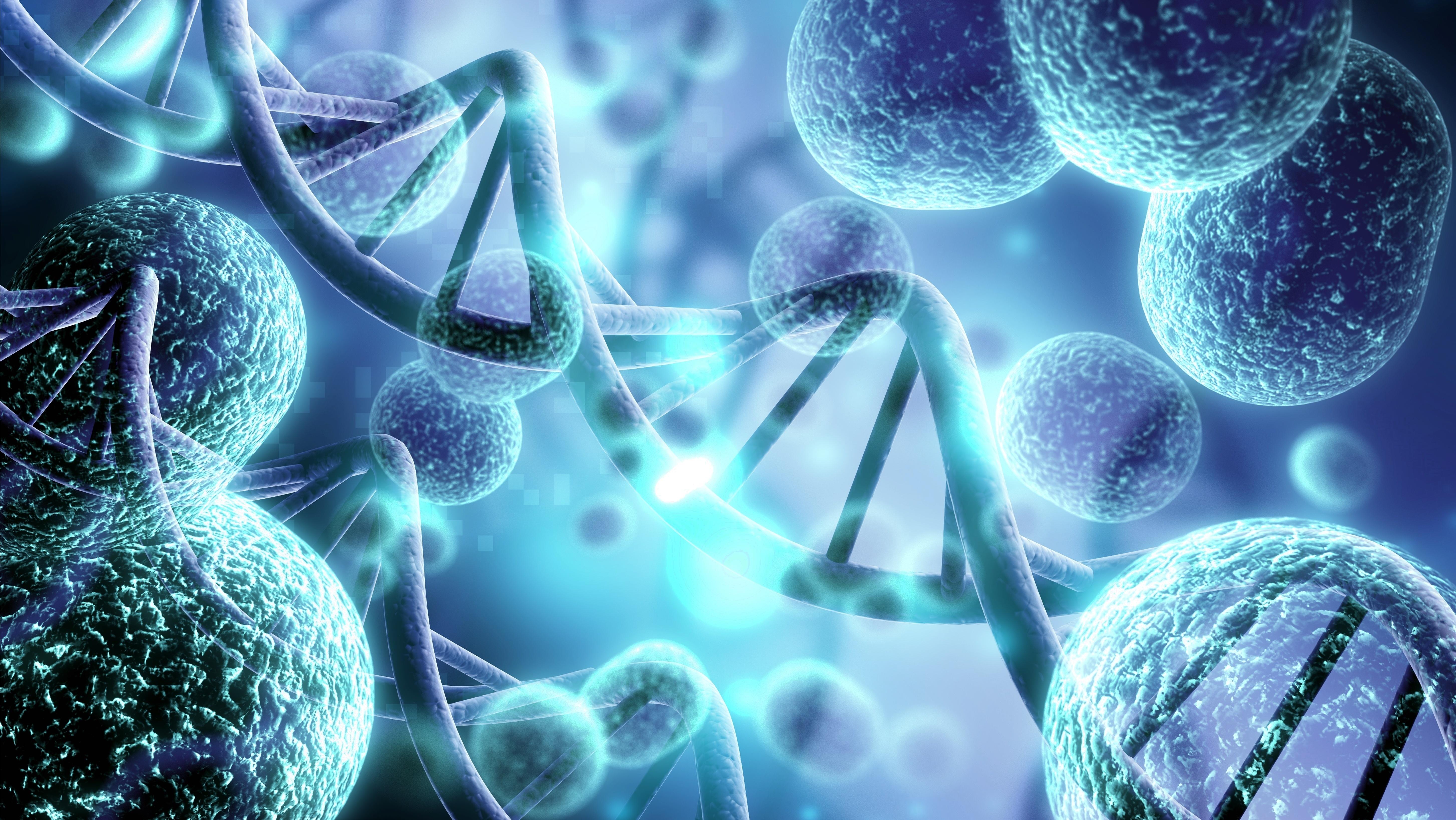 Une nouvelle technologie permet de détecter toute une série de cellules T qui reconnaissent les coronavirus, y compris le SRAS-CoV-2 (Adobe Stock 235711378)