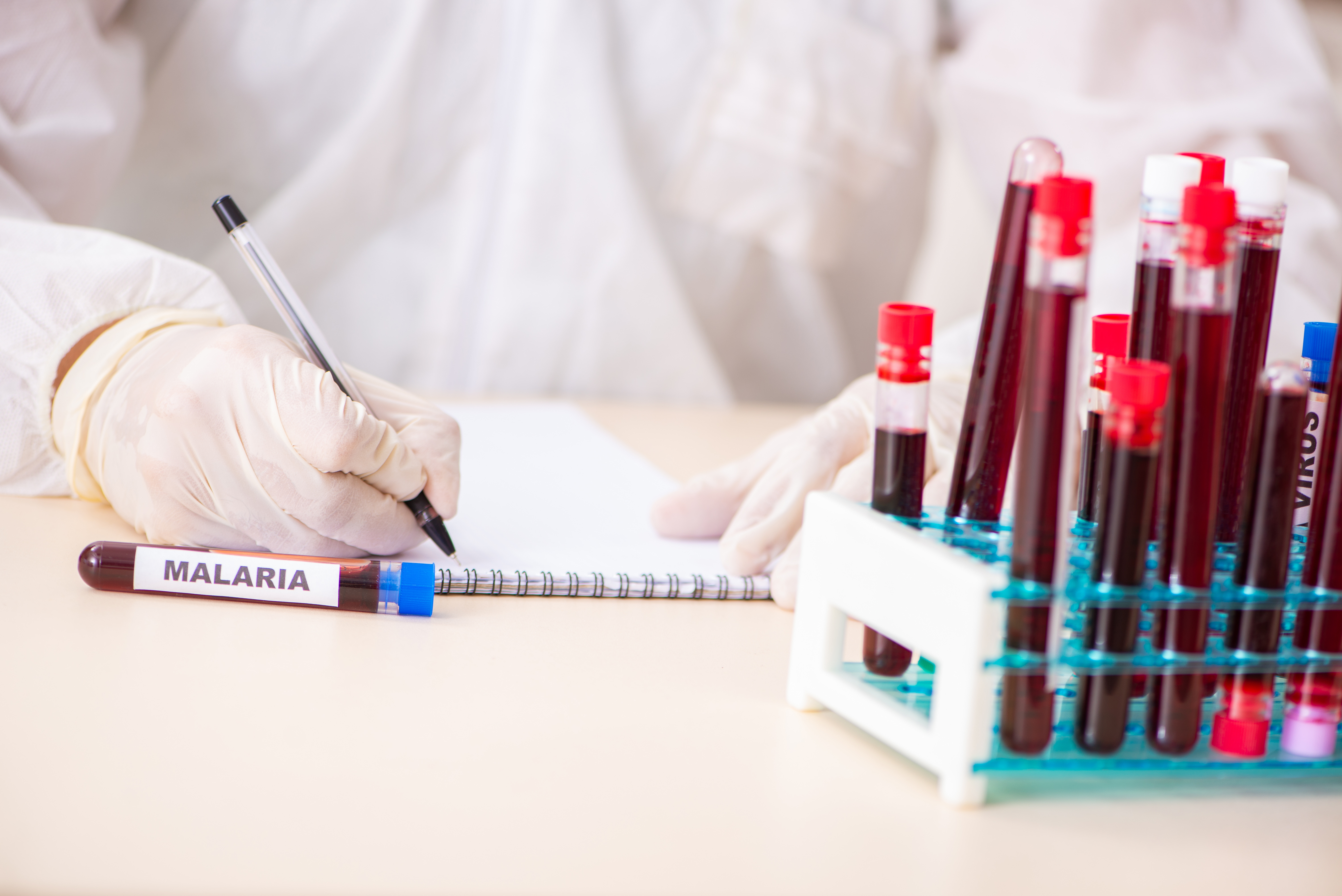 Un candidat vaccin contre le paludisme montre une efficacité vaccinale impressionnante de 77 % (Adobe Stock 237967676)