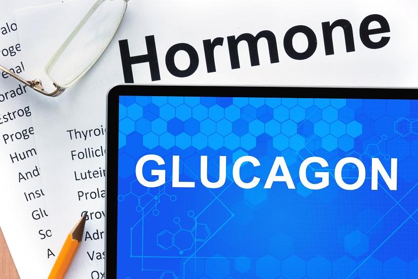 Le glucagon joue un rôle clé et pourrait être un atout protecteur