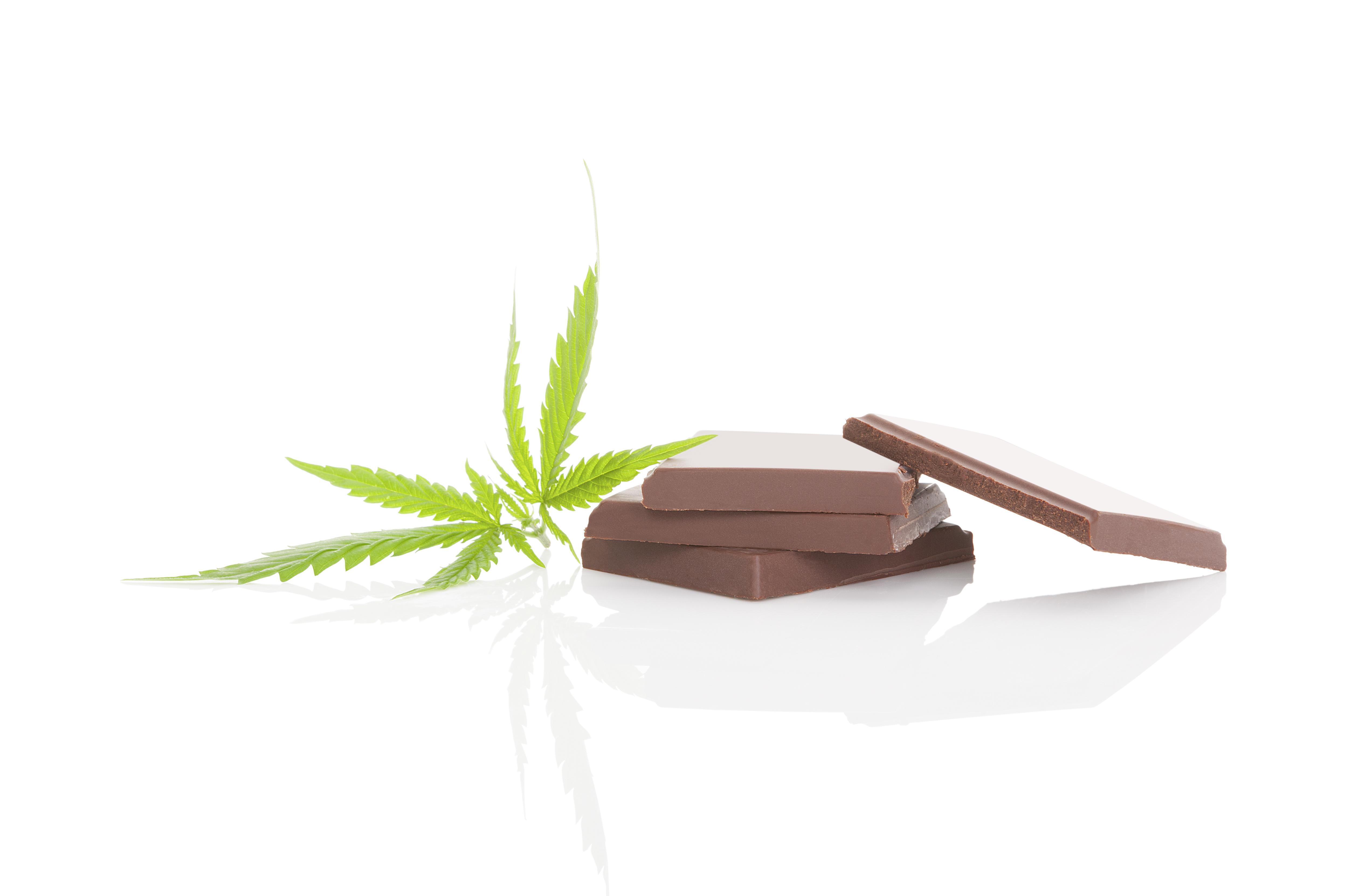 D'autres recherches devront précisément les effets cognitifs à long terme du « cannabis alimentaire ».