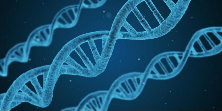 L'ARN est terriblement plus complexe que tous les composés chimiques ramenés de nos voyages dans l'espace.