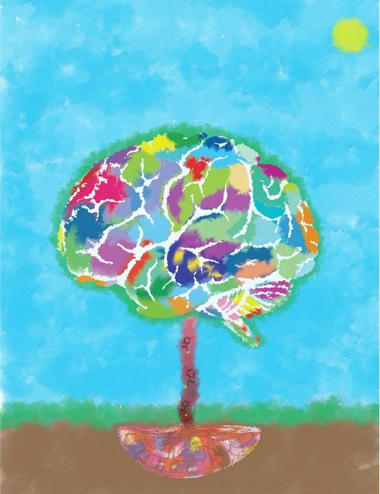 Le placenta fournit à « l'arbre du cerveau » (visuel) de la sérotonine, ce qui aide le cerveau à se développer (visuel Lei Xing et al., Neuron 2020 / MPI-CBG)