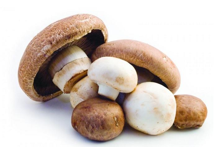 Un impact nutritionnel significatif de l'ajout d'une seule portion de champignons à l'alimentation, avec notamment l'apport de vitamine D, et sans augmentation des calories ou de sodium (Visuel Mushroom Council).