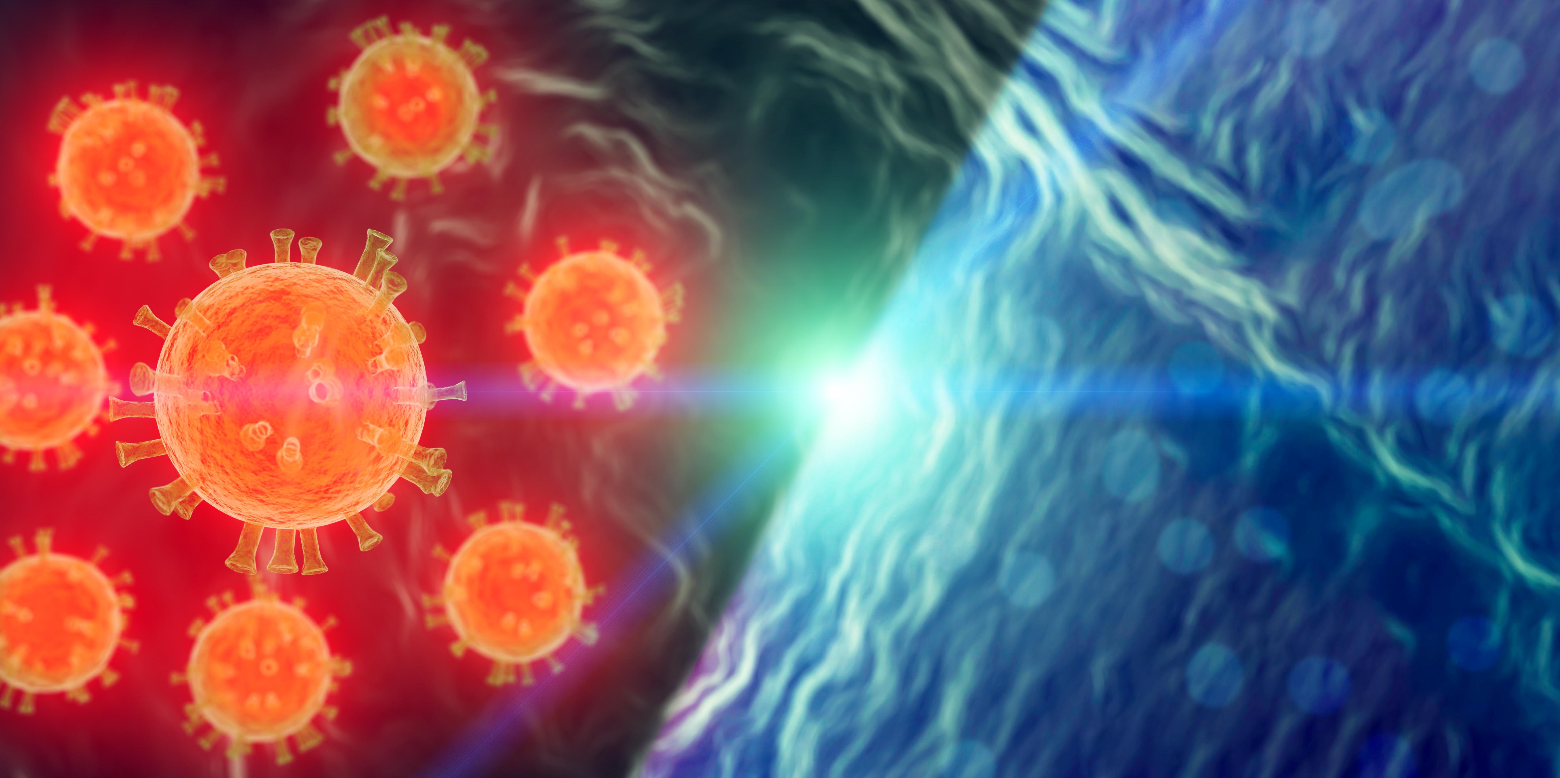 Mieux prédire le sort des virus émergents dans l'environnement