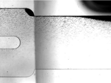 La puce concentre les globules blancs restants au milieu du canal et oriente les cellules tumorales circulantes sur les parois latérales