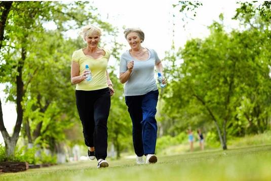 L'exercice cardiorespiratoire apparaît capable, selon ces données, de ralentir le déclin cognitif.