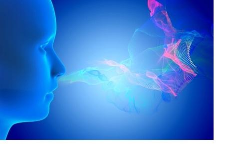 Un test cognitif associé à un test olfactif permet de prédire l'absence de transition vers la démence pour plusieurs années.