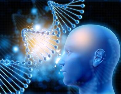 Jusqu'à 79% du risque, c'est le poids des facteurs génétiques