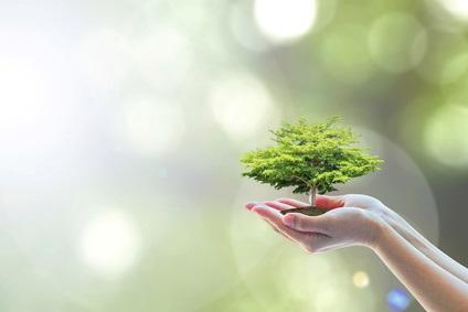 Il existe un lien biologique et épigénétique entre les événements du tout début du développement, la résistance au stress et la durée de vie.
