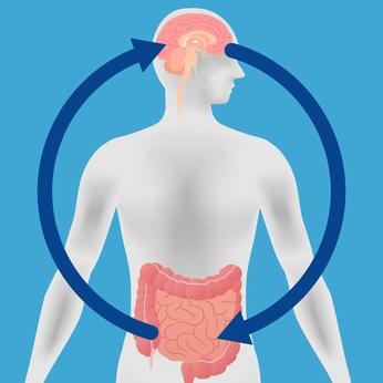 Les bactéries lactiques peuvent contribuer à prévenir le type de dépression lié à un mode de vie malsain.