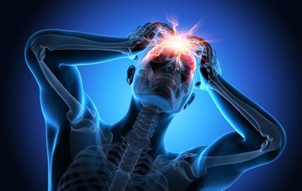 Que se passe-t-il dans le cerveau qui puisse induire un comportement social agressif ?
