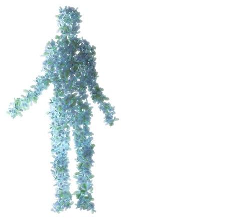 Chez la souris comme chez l'homme, l'intestin est recouvert d'une couche de mucus