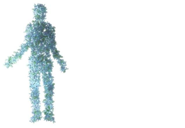 Les microbes du corps humain s'échangent des gènes, franchissant même limites des tissus d'origine