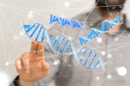 On estime que les facteurs génétiques pèsent pour 50 à 80% dans l'indice de masse corporelle (IMC).