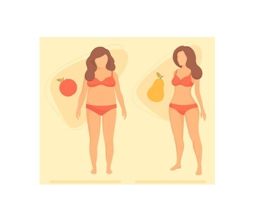 Les femmes en surpoids, à silhouette en forme de pomme, c'est-à-dire présentant de la graisse abdominale, présentent aussi un risque accru de crise cardiaque