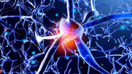 Il existe une limitation importante au nombre de « souvenirs » pouvant être stockés dans la mémoire de travail.
