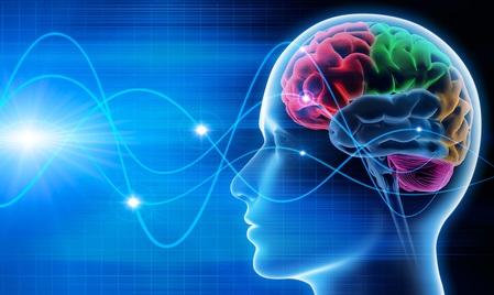 Le raisonnement moral a déjà été associé à la structure cérébrale, soit un volume plus important de matière grise