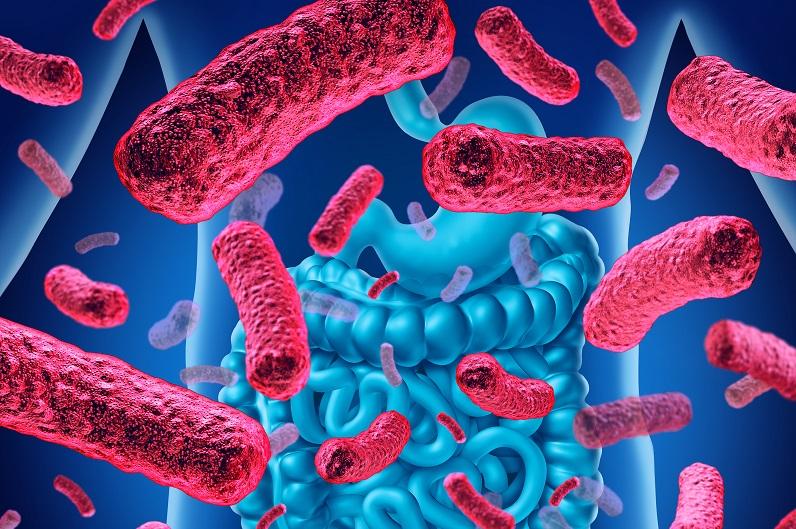 Le principe, un vaccin capable de réguler la composition et la fonction du microbiote intestinal pour protéger l'hôte contre le développement de certaines maladies chroniques.