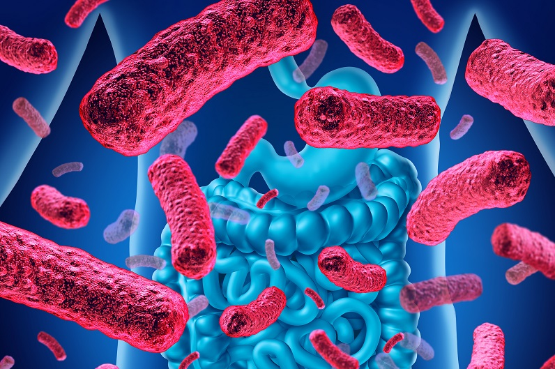 Des changements dans le mucus intestinal peuvent contribuer au déséquilibre bactérien et exacerber les symptômes fondamentaux de troubles cérébraux comme l'autisme, la maladie de Parkinson, la maladie d'Alzheimer et la sclérose en plaques (Visuel Fotolia)