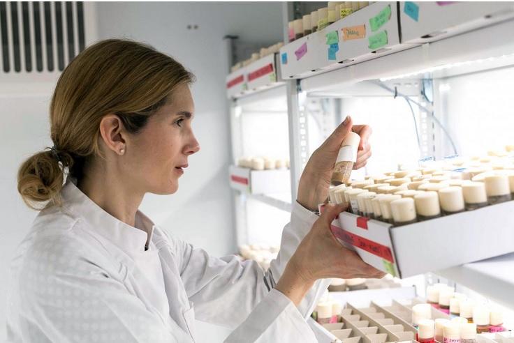 Le Dr Ilona C. Grunwald Kadow, professeur en neurobiologie a créé un contexte de laboratoire qui permet de mieux comprendre les mécanismes de la motivation chez la mouche
