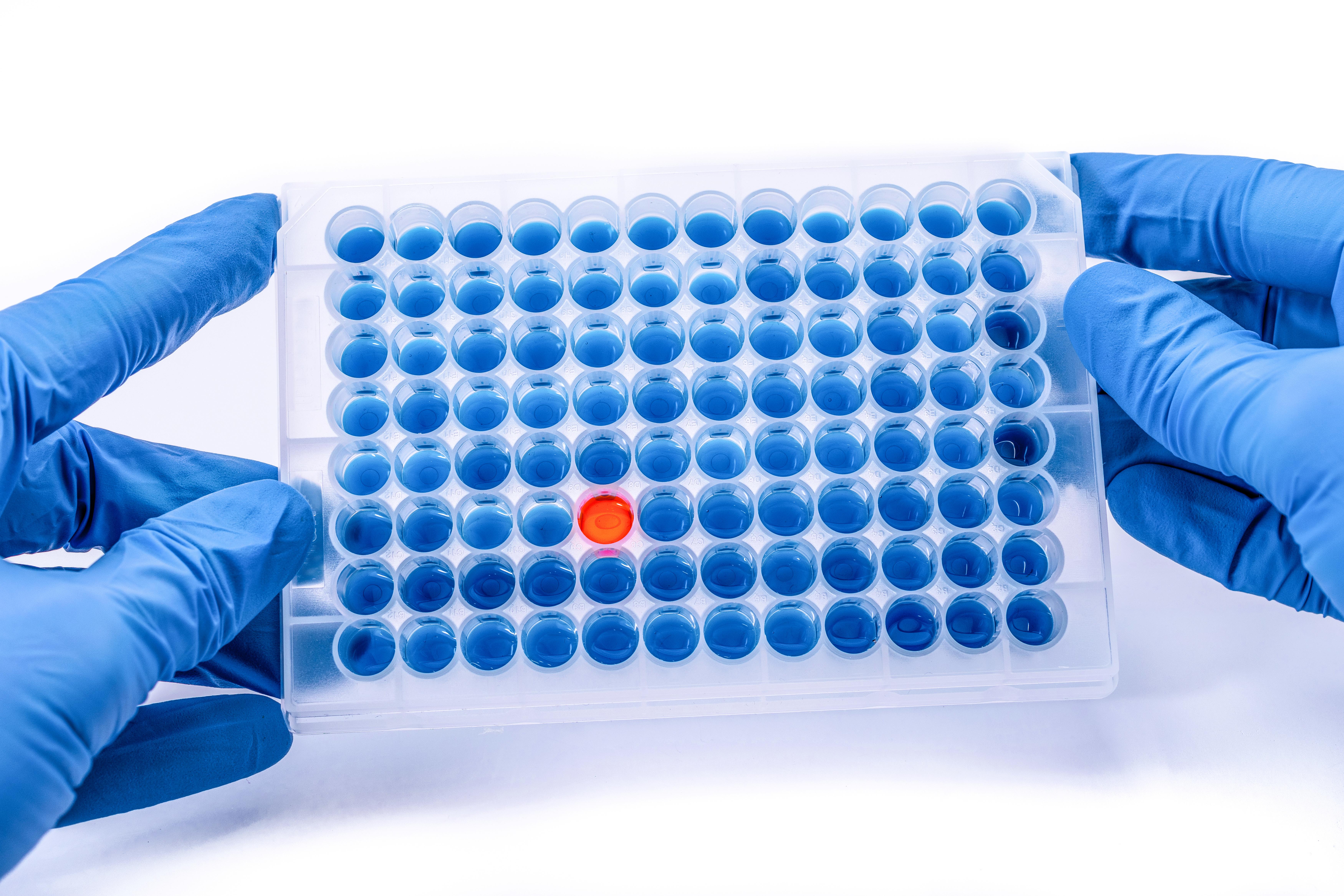Ces données apportent une meilleure compréhension du virus lui-même et ont des implications concrètes pour le développement de virus oncolytiques basés sur HSV-1.