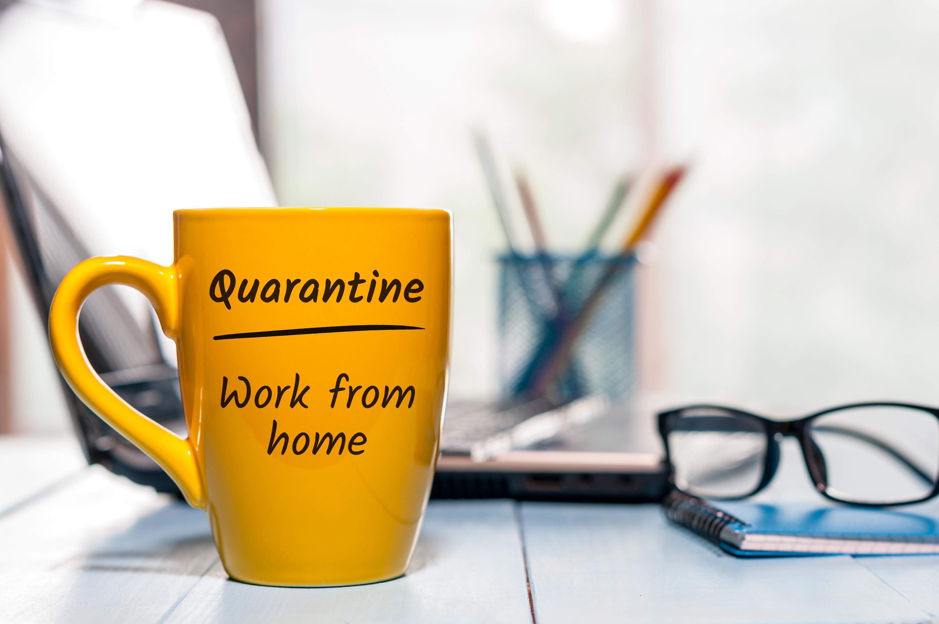 Toutes les études sans exception, incluses dans cette revue de la littérature, concluent au rôle clé de la mise en quarantaine dans le contrôle de la propagation du coronavirus.