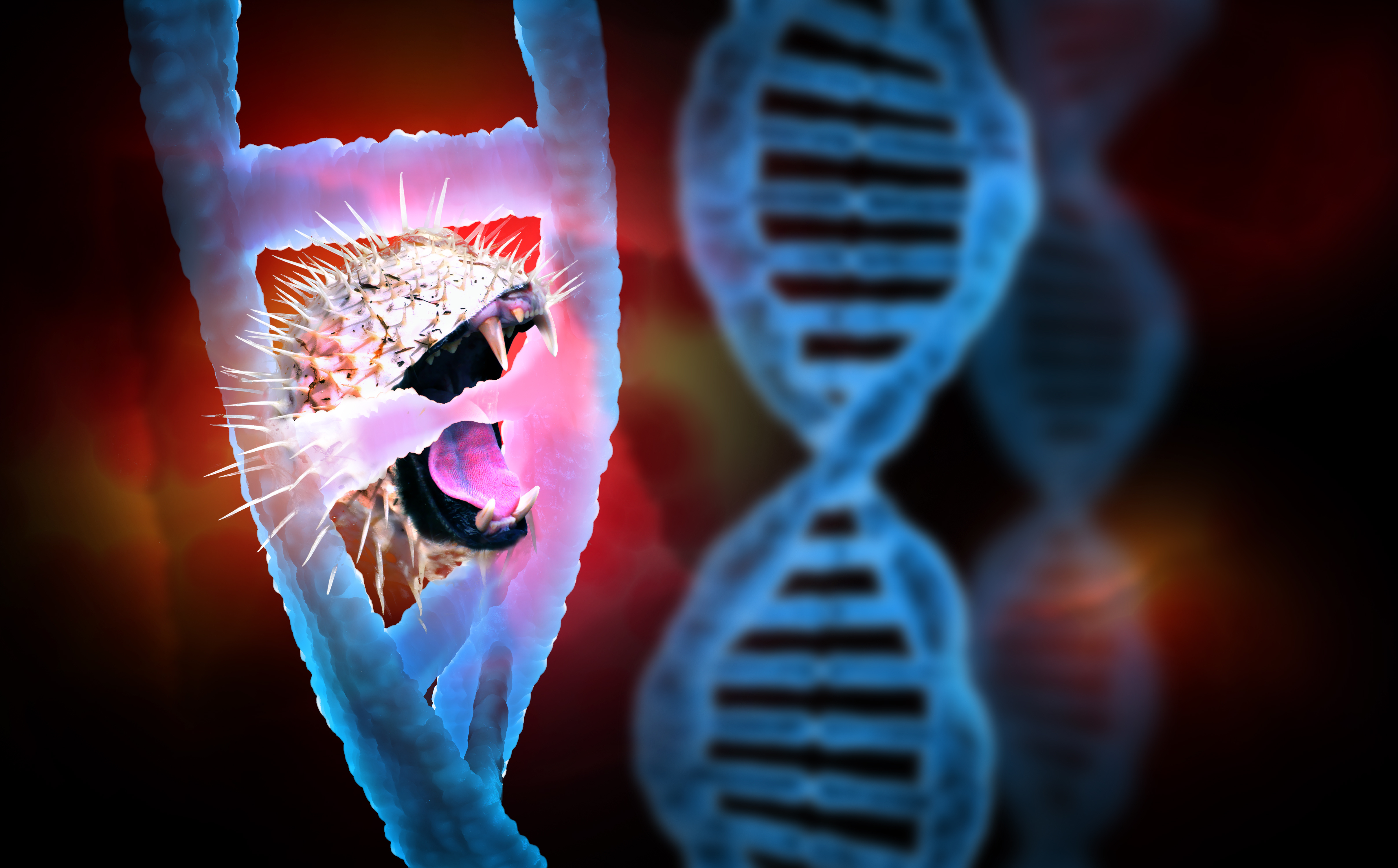 L'approche de silençage génique permet ici une baisse considérable de la graisse du foie sans augmentation correspondante des lipides sanguins (Visuel Adobe Stock 330680589)
