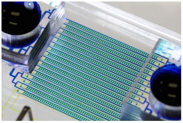 En piégeant dans le sang, les cellules cancéreuses, une par une, et en offrant un profilage génétique complet du cancer, cette nouvelle technique de biopsie liquide constitue une amélioration spectaculaire par rapport aux approches actuelles.