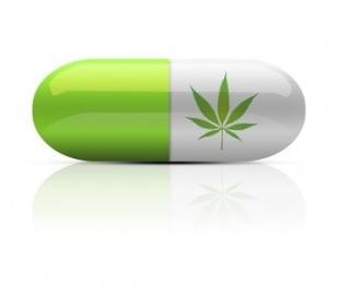 C'est un effet couramment évoqué par les usagers de cannabis, celui du soulagement de l'inflammation intestinale.