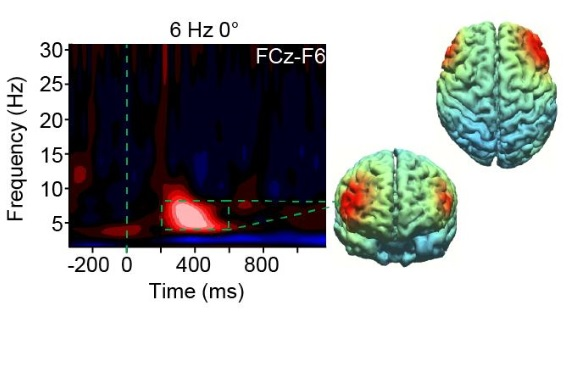 Il devient possible, par stimulation cérébrale, d'améliorer la fonction exécutive, de limiter les erreurs et d'accroître la performance cognitive sur une tâche donnée