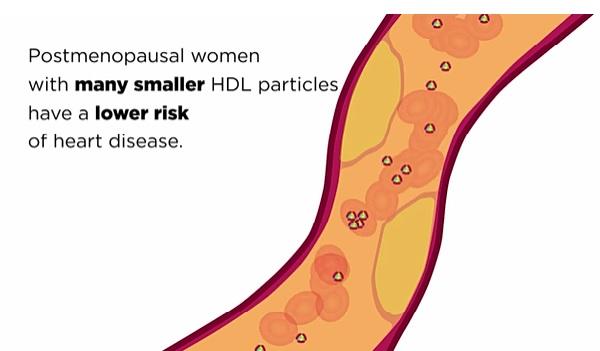 Chez les femmes ménopausées, une concentration plus élevée de particules de HDL est associée à un risque plus faible d'athérosclérose