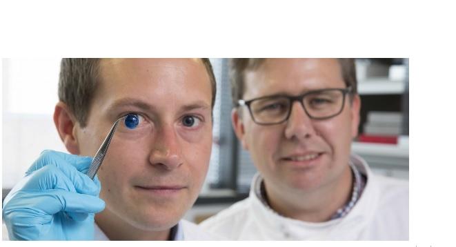 C'est un exploit d'une équipe de l'Université de Newcastle qui « imprime » ces premières cornées humaines en 3D et suggère que la technique pourrait être utilisée à l'avenir pour assurer un approvisionnement illimité de cornées.