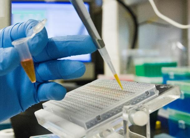 La manipulation du microbiote peut permettre de renforcer la réponse antitumorale.