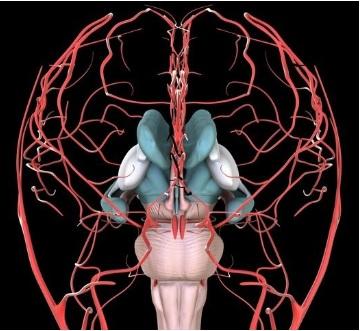 Les patients atteints de fibromyalgie présentent des anomalies du flux sanguin cérébral