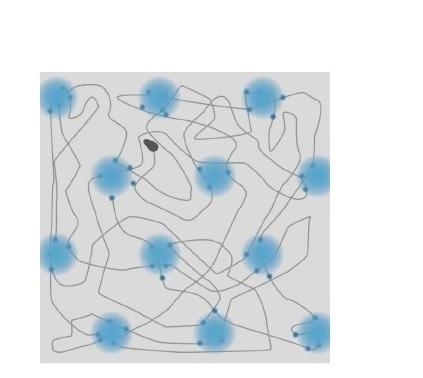 Comment nos cartes cognitives s'adaptent-elles à des environnements qui évoluent ?