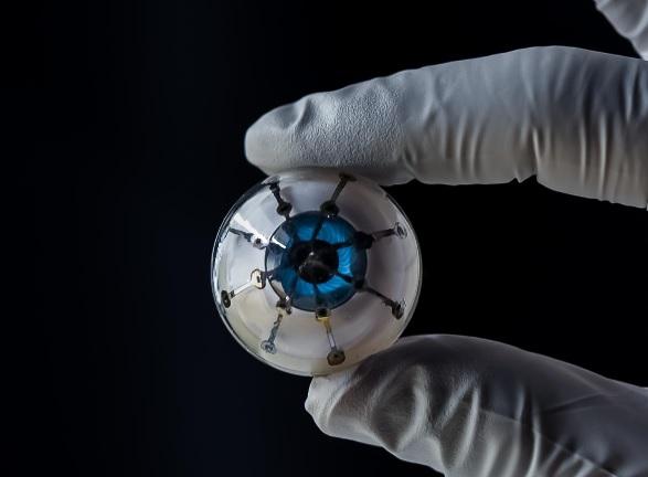 Cette prouesse démontre la capacité actuelle à combiner l'impression 3D, l'électronique et la biologie sur une seule plateforme.