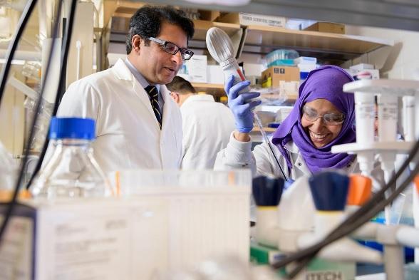 L'équipe du biologiste Salil Lachke (Visuel) montre qu'une protéine, en particulier, Celf1 est essentielle à ce processus