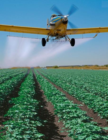 L'exposition prénatale aux pesticides, en particulier en milieu rural et agricole est associée à un risque accru d'autisme et autres troubles neurologiques, mais l'acide folique pendant la grossesse pourrait contrer ce risque.