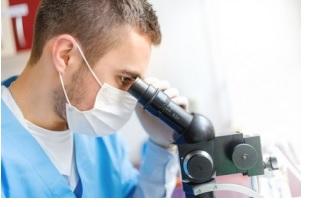 Le virus Oropouche provoque une fièvre aiguë et peut entraîner une méningite et une méningo-encéphalite.