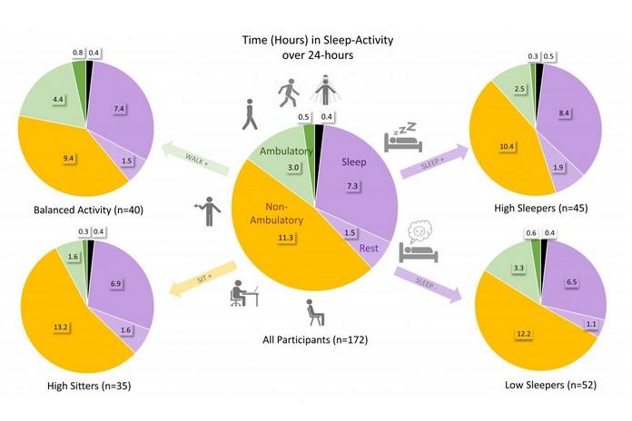 4 modèles de comportement très présents chez ces patients atteints de polyarthrite rhumatoïde, de lupus et d'arthrose du genou (Visuel Lynne Feehan).