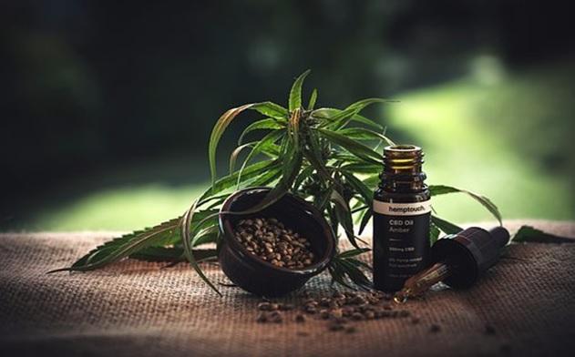 L'une des formes les plus répandues est l'huile de CBD conditionnée en flacon (Visuel Ereferer)