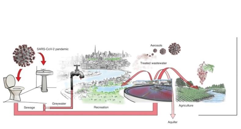 Visuel Nature Sustainability