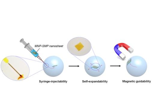 Les nanofeuilles peuvent être adaptées à la délivrance de médicaments et au diagnostic