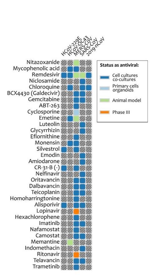 31 antiviraux déjà connus apparaissent comme des candidats possibles