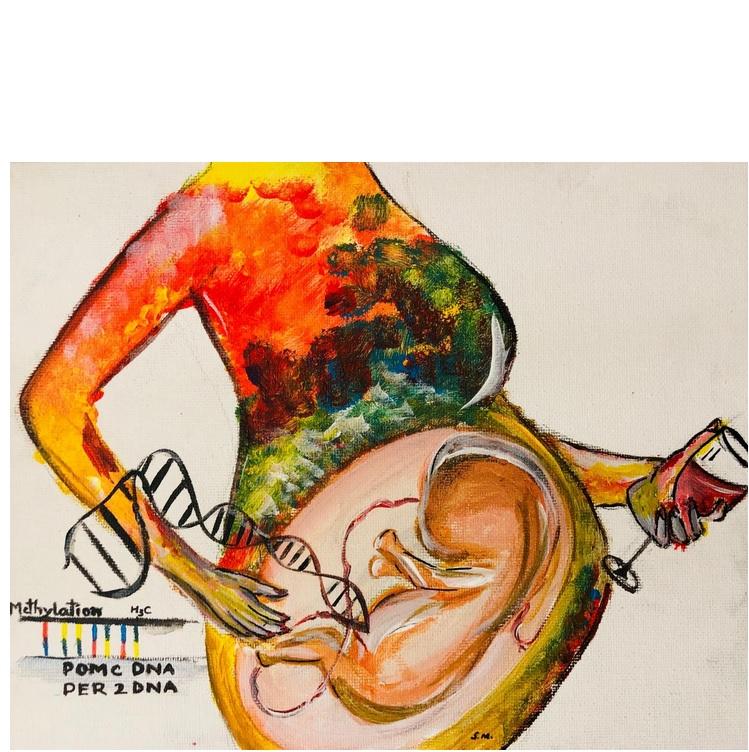 2 gènes - POMC, qui régule le système de réponse au stress, et PER2, impliqué dans notre horloge interne témoignent de la consommation d'alcool de la mère, même modérée