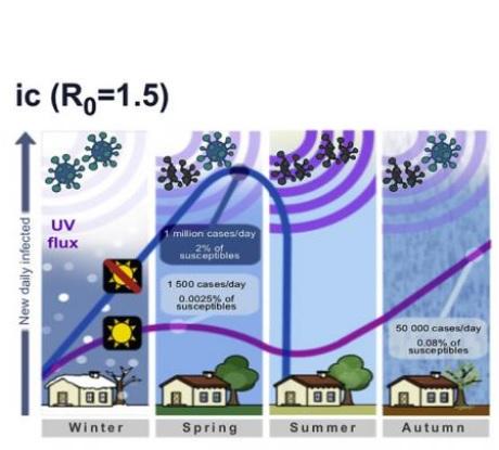 Le modèle prédit des cycles intermittents et marqués, qui finissent par se stabiliser (Visuel Paolo Bonfini, Université de Crète)
