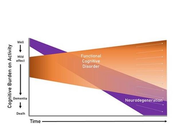 L'objectif est donc bien de démêler les causes des symptômes précoces de la mémoire (Université de Bristol)