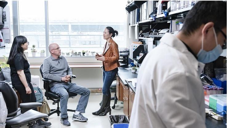 Ces scientifiques de l'Institut Gladstone de l'Université de Californie San Francisco (UCSF) et de l'Université Emory (Géorgie) viennent d'identifier des signatures de lymphocytes T qui peuvent contribuer à expliquer pourquoi certaines personnes développent un COVID-19 sévère (Visuel Gladstone Institutes)